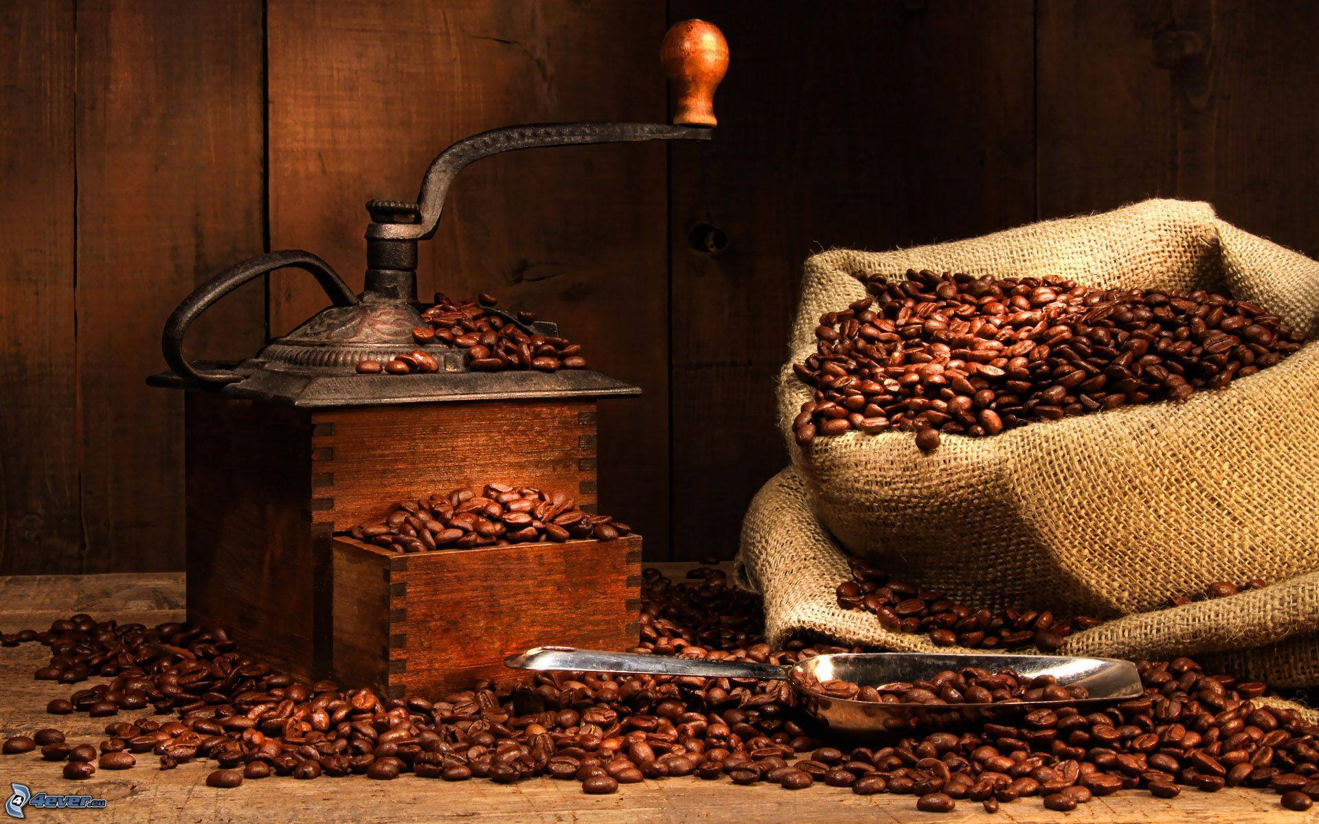 Proveedores de café para la hostelería en Valencia