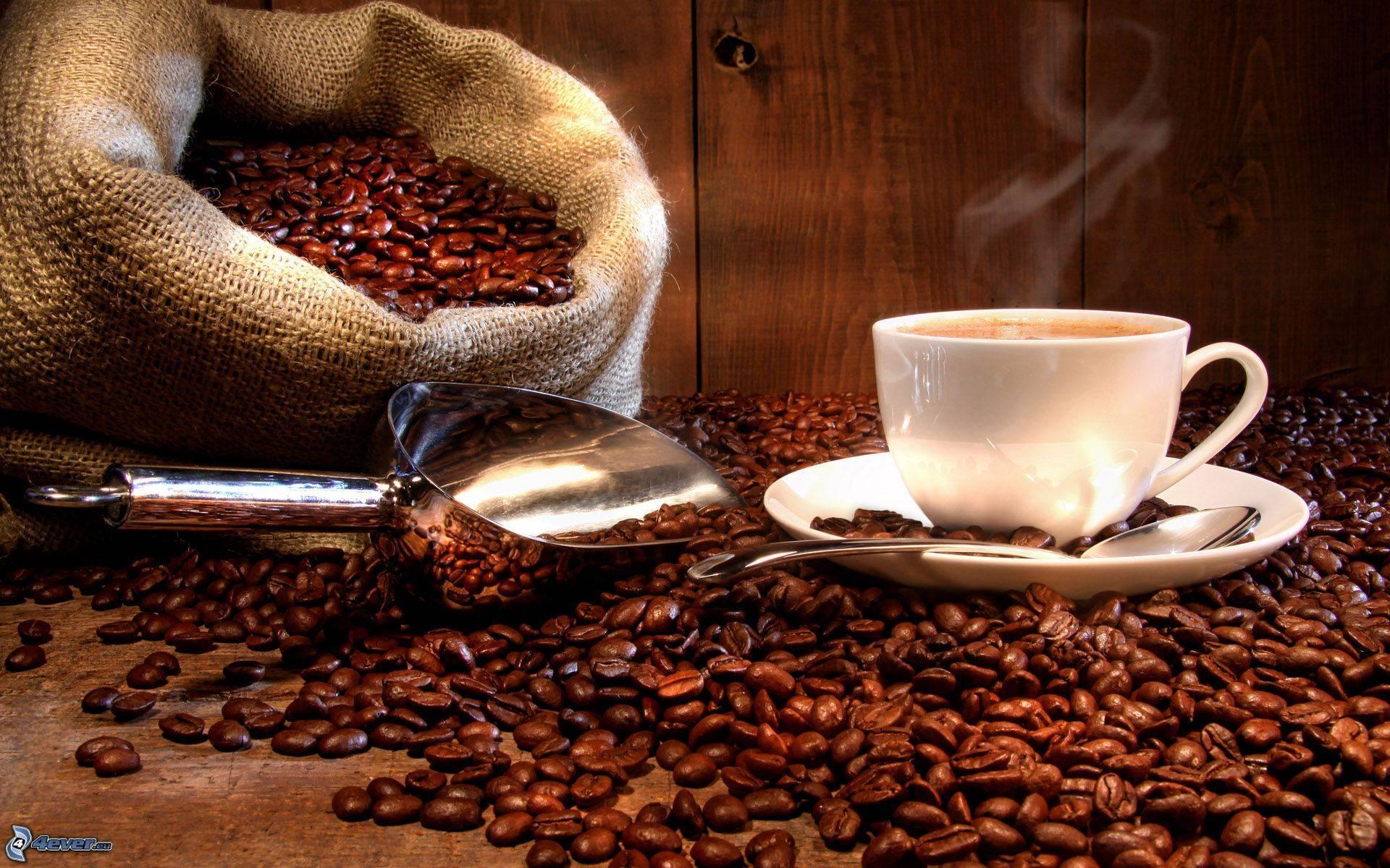 Café en Valencia de calidad