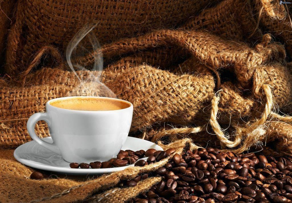 Distribuidores de café de calidad en Valencia