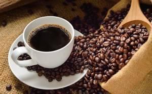 Distribuidores de café de calidad
