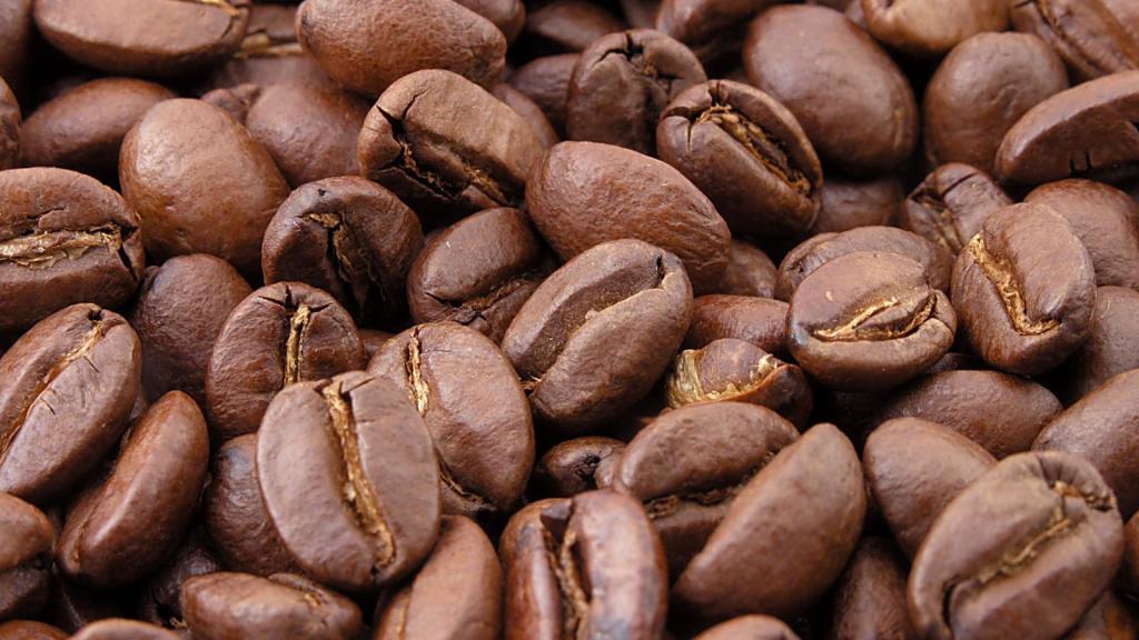 Servicios de venta de café Valencia