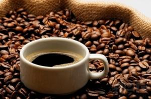 Proveedores de café de calidad en Valencia