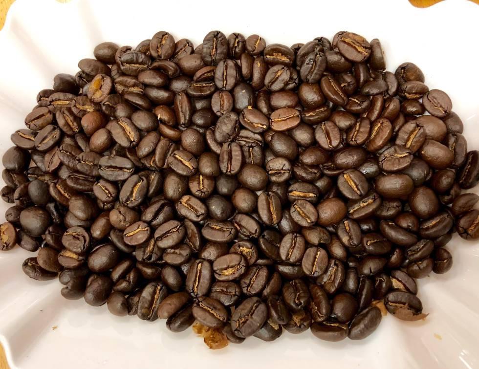 Tostadero de café Valencia profesional