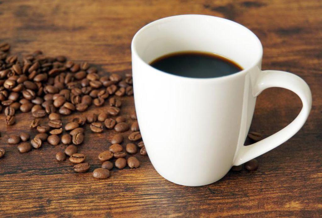 Proveedores del mejor café Valencia