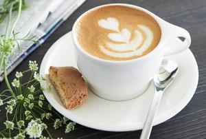 Empresa de venta de café Valencia profesional