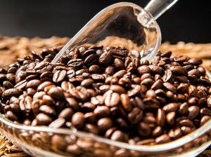 Empresa de café para restaurantes Valencia profesional