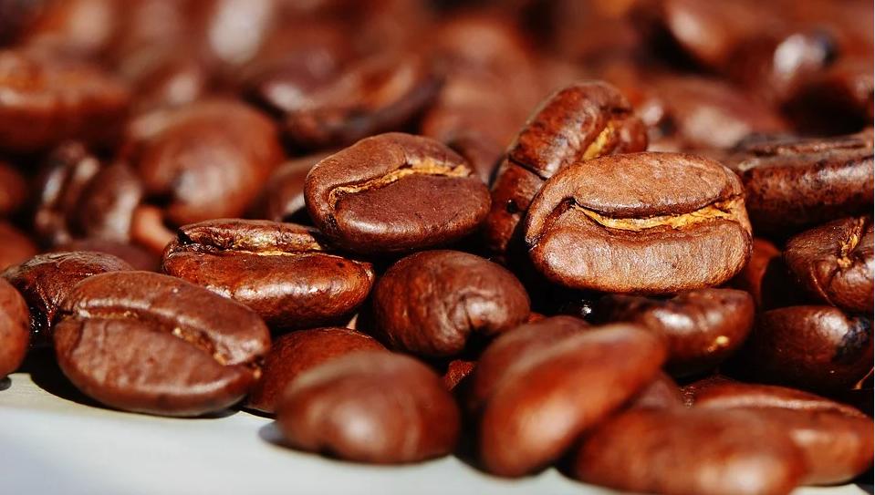 Distribuidores de café de gran calidad