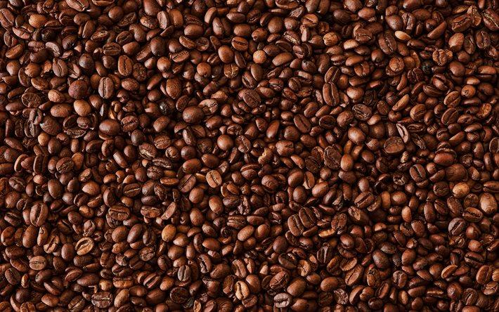 Proveedores de café de calidad